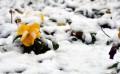 Kar, yurt genelinde etkisini sürdürüyor GALERİ