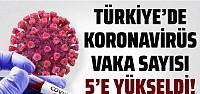 Türkiye'de koronavirüs vaka sayısı 5'e...